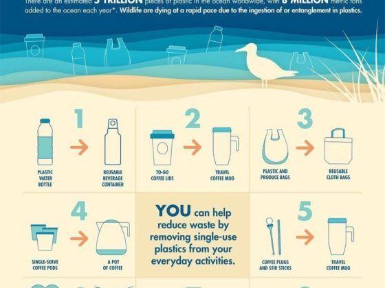 Tipps Plastik vermeiden