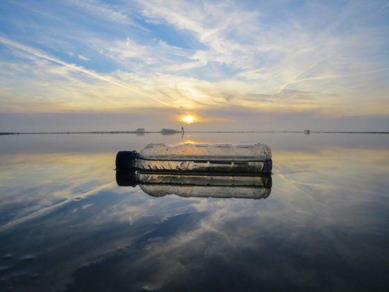 Plastikflasche im Meer