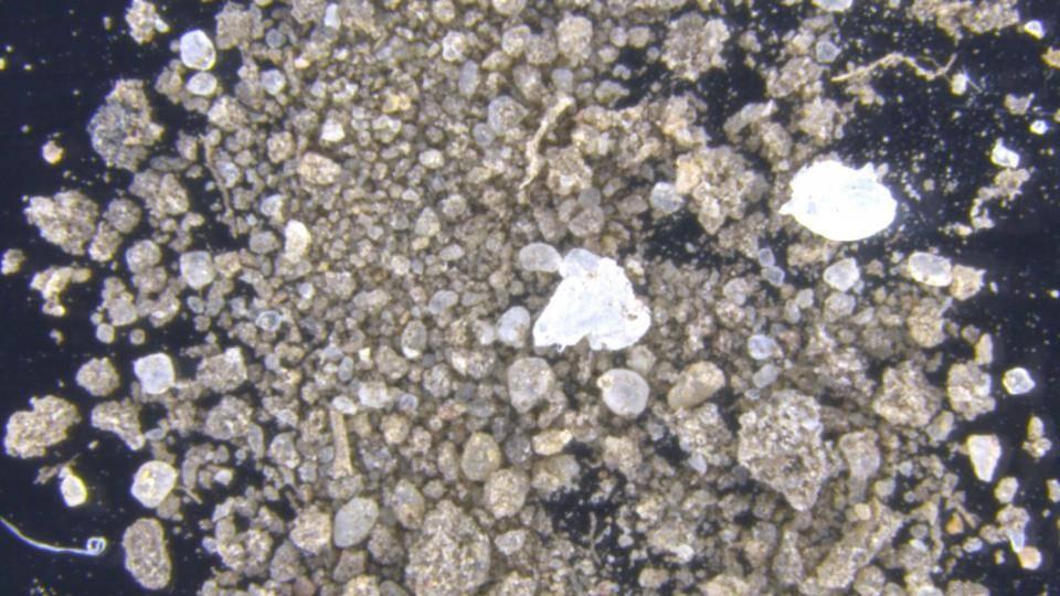 Umweltverschmutzung durch Mikroplastik im Meer