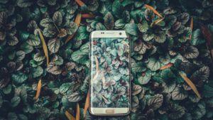Ein Smartphone liegt auf grünen Blättern; das Titelbild für den Blogbeitrag Apps um dein Leben nachhaltiger zu gestalten
