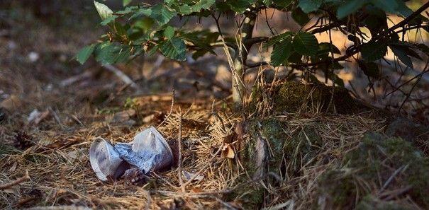 Plastikbecher liegt im Wald auf dem Boden